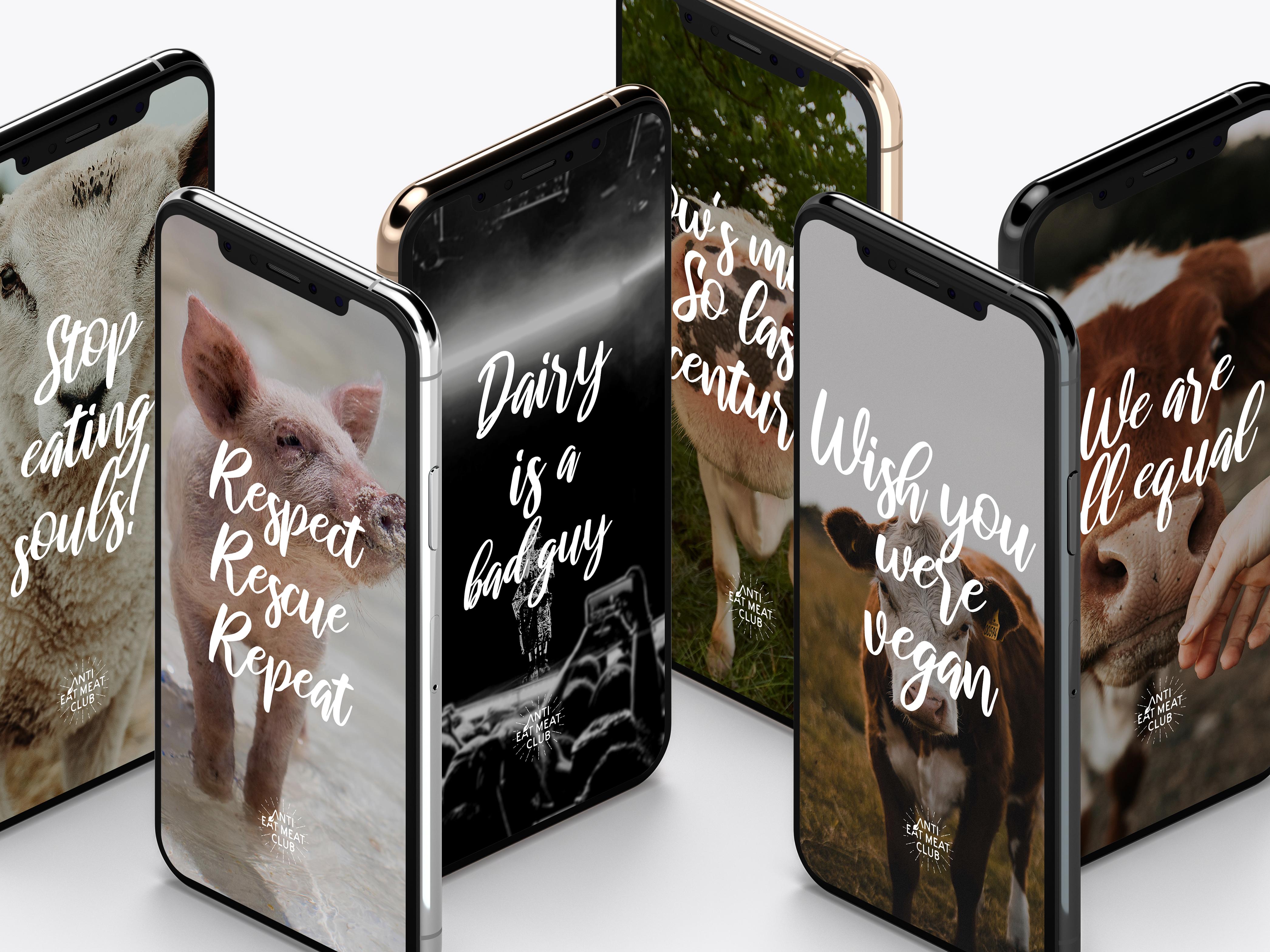 Top 15 Vegan Wallpaper für iPhone & Handy